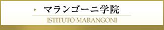マランゴーニ学院